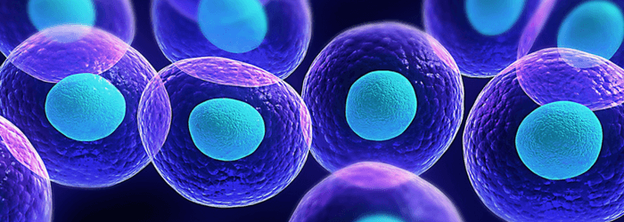 Stem Cell Therapy – CSRO/ASRO